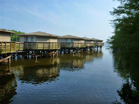 Lake Marion Sc Boat Rentals by Santee Cooper Cabins Womens Outdoor Wildlife Retreat