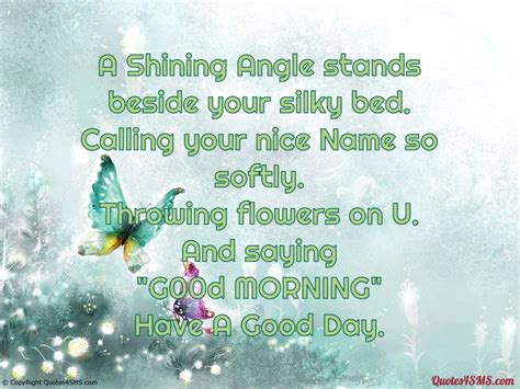 shining angle stands   silky bed good