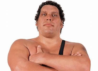 Andre Giant Wwe Wrestling Theme Song Dvd