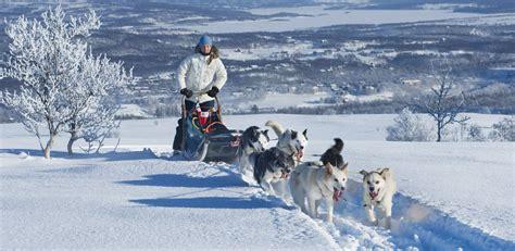 Dog Sledding in Norway - Original Travel