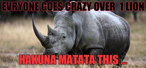 Rhino Memes - rhino imgflip