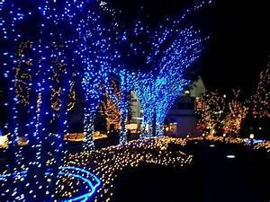 Christmas Lights – Living Hope Family Church