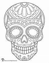 Coloring Sugar Skulls Printable Skull Adult Dead Sheets Drawing Colouring Template Mandala Drawings Woojr Artwork Flower Muertos Printables Skeleton Flowers sketch template