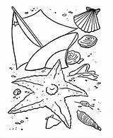 Coloring Summer Pages Shells Sea Sheets Beach Fun Printable Printables Older Seashells Preschool Activity Toddlers Season Honkingdonkey Adult Adults Clipart sketch template