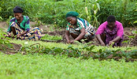 nigeria rural farming receives usadfs usm investment