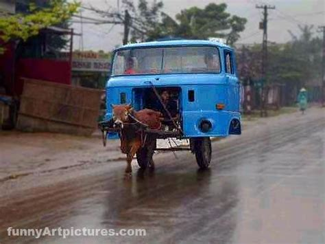 Cars Transportation, Auto-donkey, Funny Picture Gallery