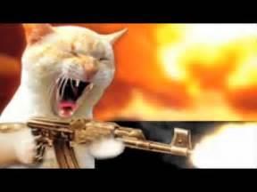 cat gun the eco cat speaks december 2011