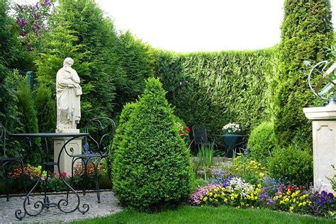 Schöne Kübelpflanzen Für Die Terrasse by Top 10 Immergr 252 Ne Pflanzen Hecke Str 228 Ucher B 228 Ume