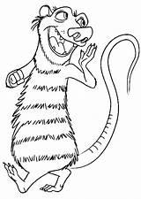 Coloring Opossum Skunk sketch template