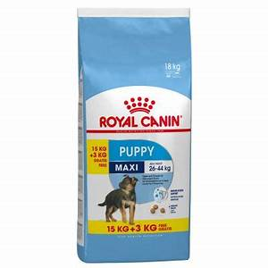 Royal Canin Maxi Junior : crocchette per cani royal canin maxi puppy junior zooplus ~ Buech-reservation.com Haus und Dekorationen