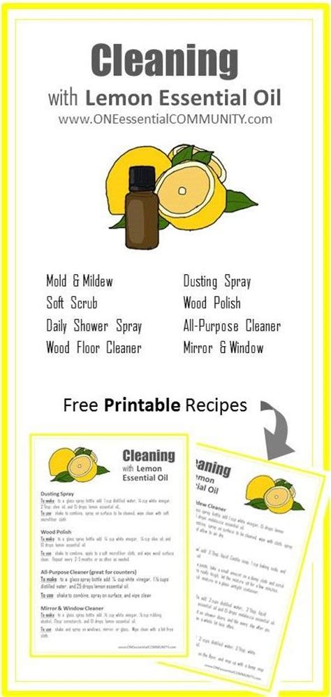 Essential Oils For Cleaning Bathroom by Best 25 Cleaning Shower Mold Ideas On Pinterest Shower