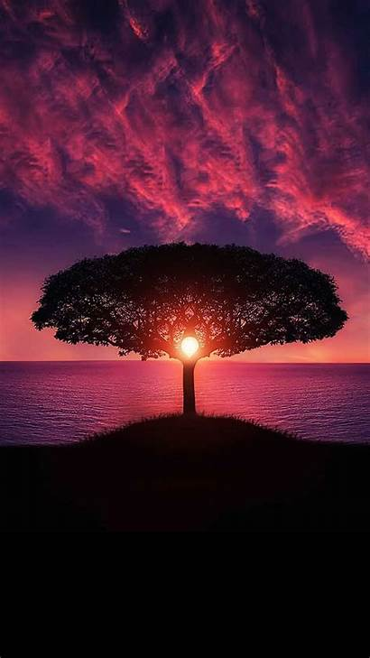 Sunset Magic Phone Mobile Wallpapers Ultra Android