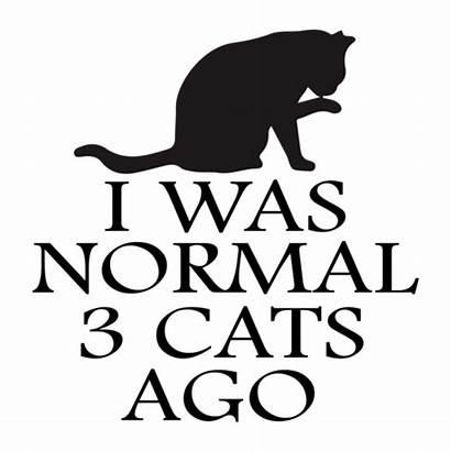 Cats Ago Normal Cat Funny Shirt