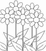 Coloring Daisy Flower Flowers Printable Putih Bunga Gambar Hitam Sunflowers Daisies Sheets Getcolorings Vase Tropical Scout Growing Adult Adults Mewarnai sketch template