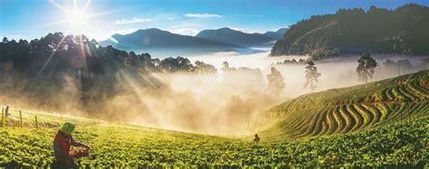 โครงการหลวงดอยคำ เกษตรเพื่อชุมชนที่พ่อสร้างเพื่อคนไทย