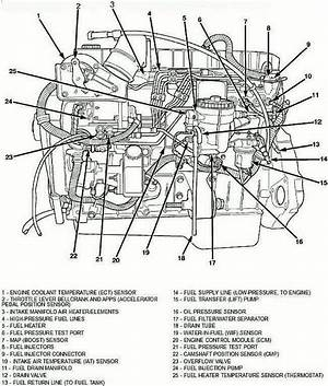 2006 Dodge Cummins Wiring Diagram 26106 Netsonda Es