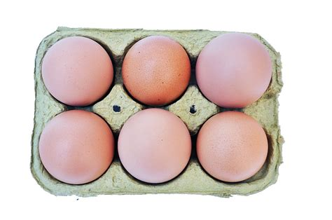 imagen de huevera   huevos colorados foto gratis