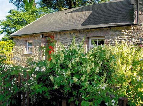 country cottage holidays chloes country cottages mill cottage in poulmaloe near