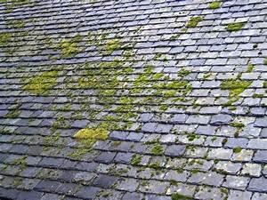 Demoussage Toiture Ardoise : demoussage toiture avec le mosskade 100 naturel et sans ~ Premium-room.com Idées de Décoration