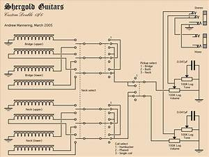 Double 6stringguitar  Wiring Plan