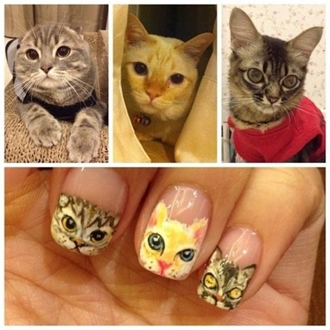 cat nail designs cat nail yet one more way to display our cat