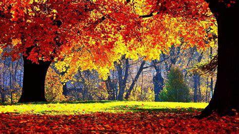 Autumn Season Wallpapers For Phone by Wallpaper Fall Season 183 Wallpapertag