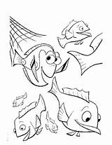 Nemo Coloring Finding Pages Fishing Printable Drawing Breaks Fish Marlin Getdrawings Whale Turtle Crush Popular Categories sketch template