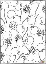 Coloring Pages Cherries Flowers Pattern Cherry Printable Blossom Flower Sheets Patterns Colouring Printables Hawaiian Adult Designs Hearts Popular sketch template