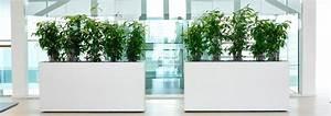 Pflanzen Als Raumteiler : herausragende raumteiler mit pflanzen innerhalb gr ne akzente raumbegr nung beliebte 0 ~ Yasmunasinghe.com Haus und Dekorationen
