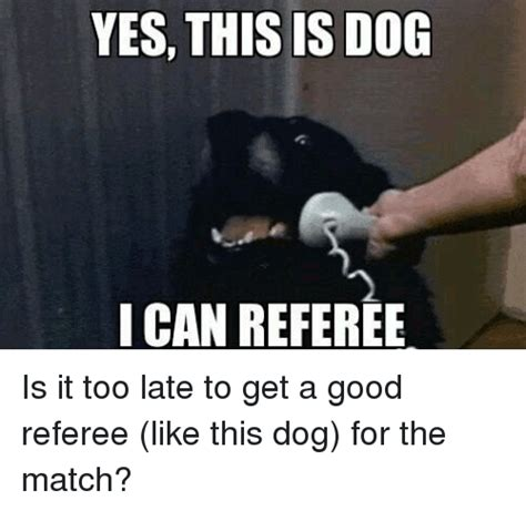 Yes This Is Dog Meme - 25 best memes about yes this is dog yes this is dog memes