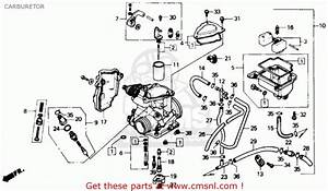 2001 Honda Rancher 350 Carburetor