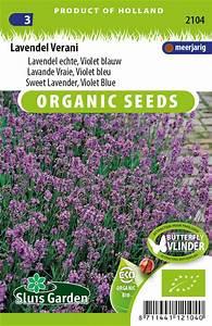 Echter Lavendel Kaufen : lavendel echter violett blau verani eko kaufen samen bestellen f r nur ~ Eleganceandgraceweddings.com Haus und Dekorationen