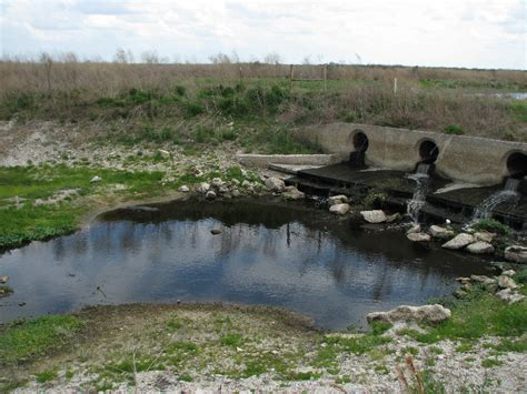 alachua fl pictures posters news and videos on your