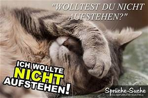 Ich Will Nicht Aufstehen : ich wollte nicht aufstehen lustige spruchbilder mit katzen ~ Markanthonyermac.com Haus und Dekorationen
