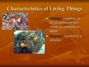 12 Characteristics of Living Things