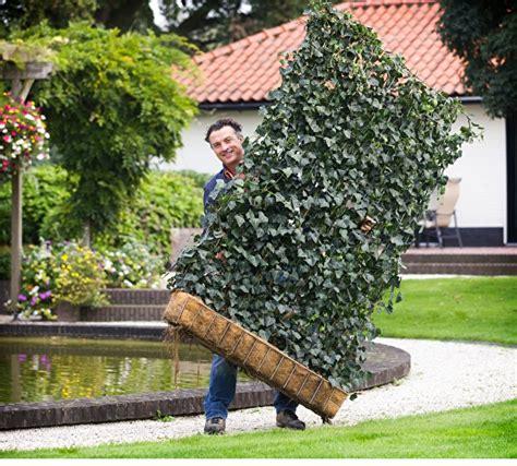 Garten Und Landschaftsbau Salzgitter by Pin Melvin Brand Flu Op Tuin