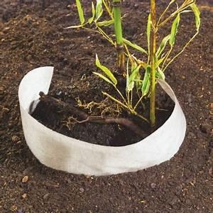 Geotextile Mr Bricolage : feutre renforc pour plantation et contr le des bambous 0 ~ Melissatoandfro.com Idées de Décoration