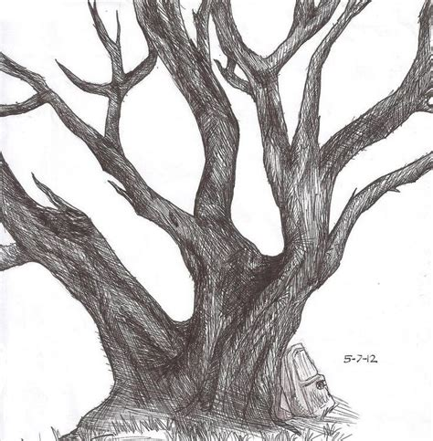 realistic apple tree drawing how to draw realistic plants 搜索 how to draw