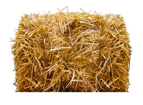 library  straw hay clip art  png files clipart