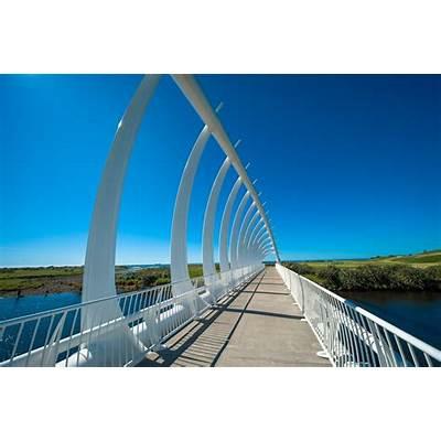 Panoramio - Photo of Te Rewa Bridge