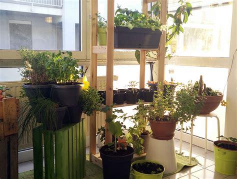 die besten tipps fuer deinen mini balkon deko pflanzen
