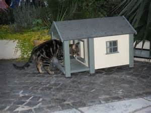 outdoor shelter for cats outdoor cat house cat shelter cat kennel cathouses d6