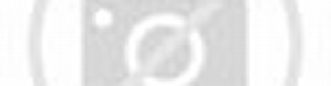 EYE International | Dutch shorts at Clermont-Ferrand 2017