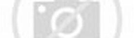Galleria Nazionale delle Marche — Wikipédia