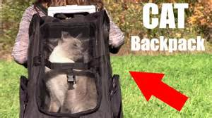 backpack for cats cat backpack oxgord pet backpack carrier review
