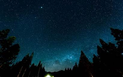 Sky Night Stars Starry Nebula Forest 4k