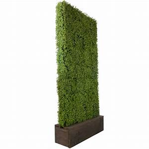 Artificial Boxwood Hedge - Celebrations! Party Rentals
