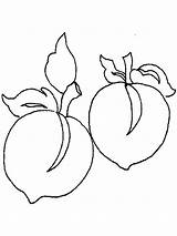 Peach Coloring Pages Peaches Fruits Template Printable Recommended Bright Mycoloring sketch template