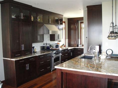 dark brown kitchen