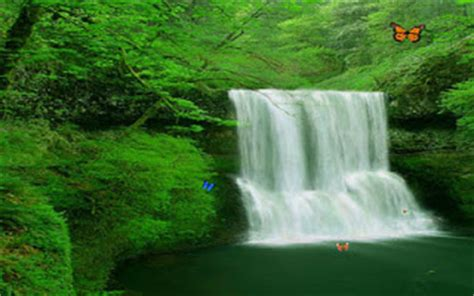 Living Waterfalls Animated Wallpaper - wall paper store